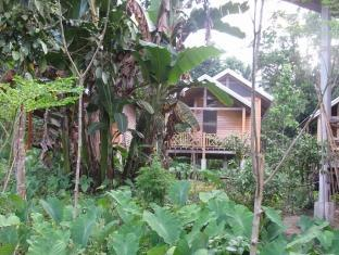 picture 5 of Harold's Ecolodge