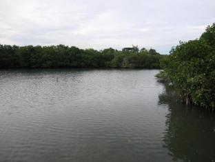 Papa Kit's Marina Resort Liloan - Surroundings