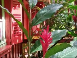 Ecolodge La Maison de la Nature