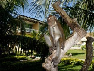 摸寶海灘度假村 莫阿爾博阿爾 - 酒店外觀