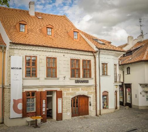 Hotel Kocour Trebic