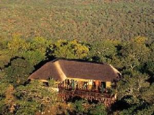 關於沙亞莫雅老虎捕魚及遊戲旅館 (Shayamoya Tiger Fishing and Game Lodge)