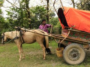 Chitwan Safari Camp & Lodge Chitwan - Surroundings