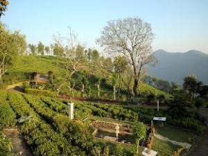 Tea Nest Nature Resorts - Coonoor