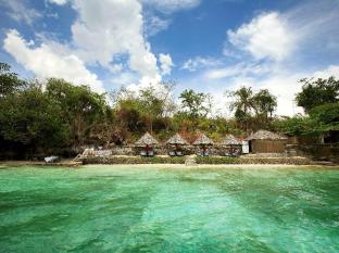 Badian Island Wellness Resort Badian - Плаж