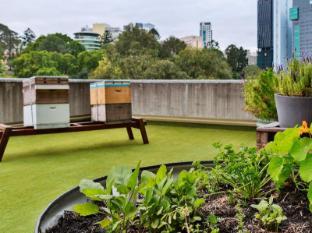 Hotel Jen Brisbane Brisbane - Vườn