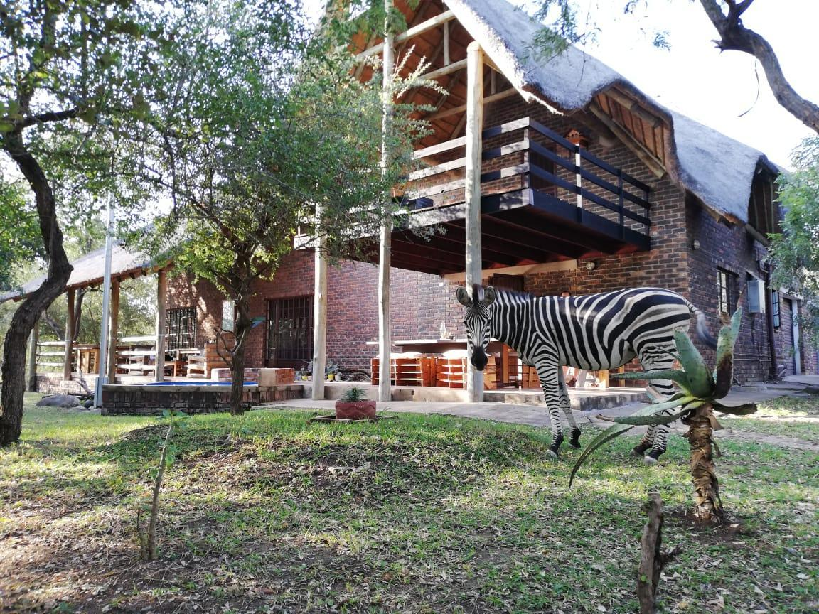 Ama Zing African Safaris