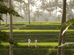 Kamandalu Ubud Resort Bali - Trekking