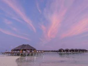 Olhuveli Beach & Spa Resort: ważne informacje (Olhuveli Beach & Spa Resort)