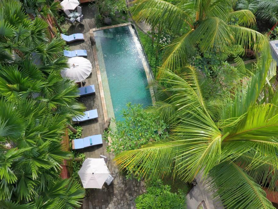 Best Room Close to Monkey Forest Ubud