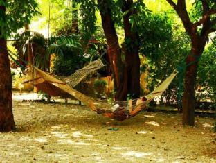 Chitwan Gaida Lodge Chitwan - Surrounding