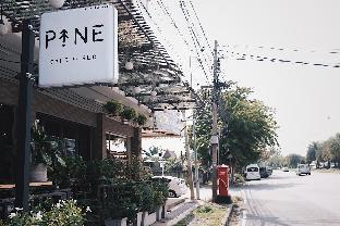パイン カフェ アンド ベッド Pine Cafe and Bed