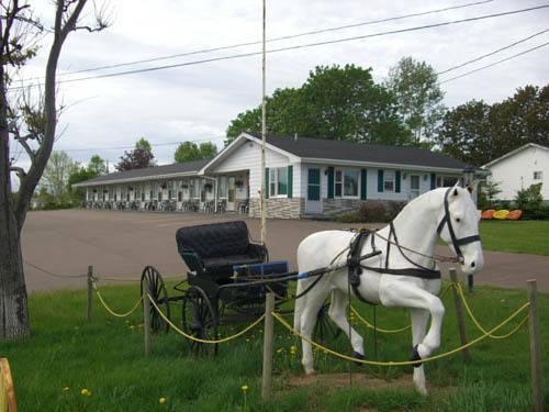 The White Horse Motel