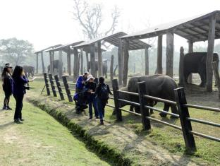 Green Park Resort Chitwan Chitwan - Elephant Breeding Center