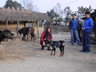 Green Park Resort Chitwan Chitwan - Tarikan Berdekatan