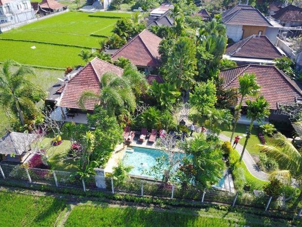 Villa Mandi Bamboo House