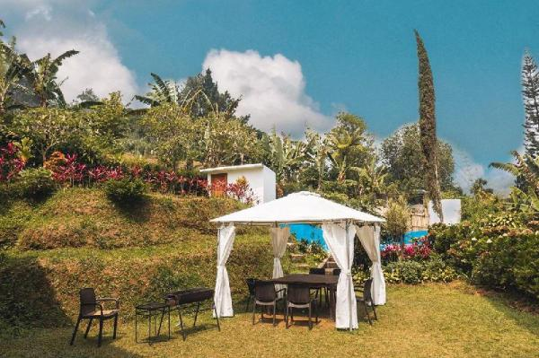 Villa Green hill - greenish garden and flowers Puncak