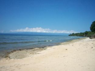 picture 3 of Toris Backpackers Paradise