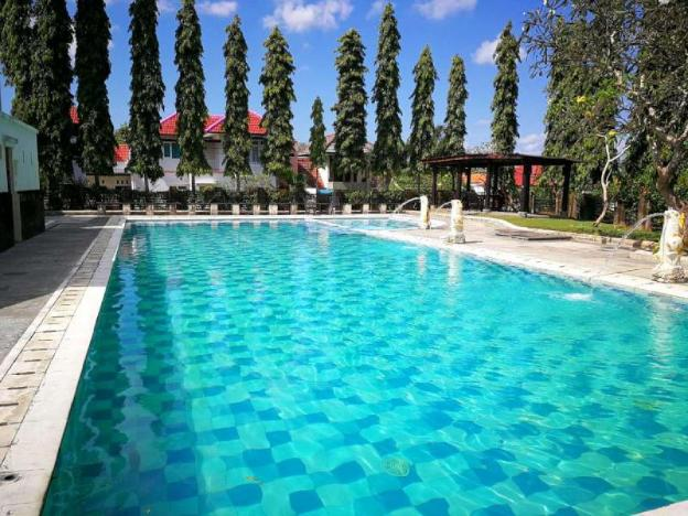 #230 Spacious One Bed Room Apartment at Canggu