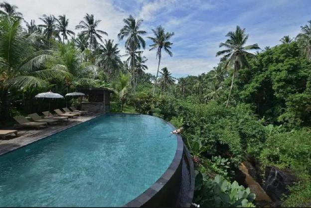 #184 Best Room With Best View In Ubud Center