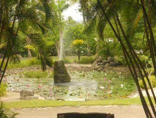 Sonaisali Island Resort Nadi - Surroundings