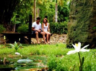 Sonaisali Island Resort Nadi - Garden