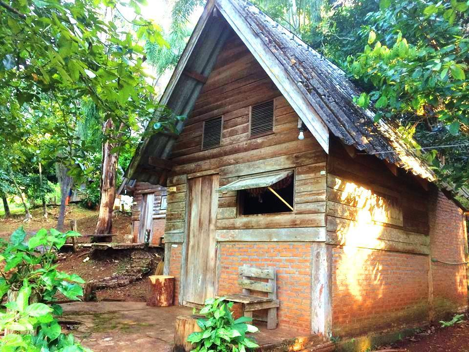 Jungle Guesthouse