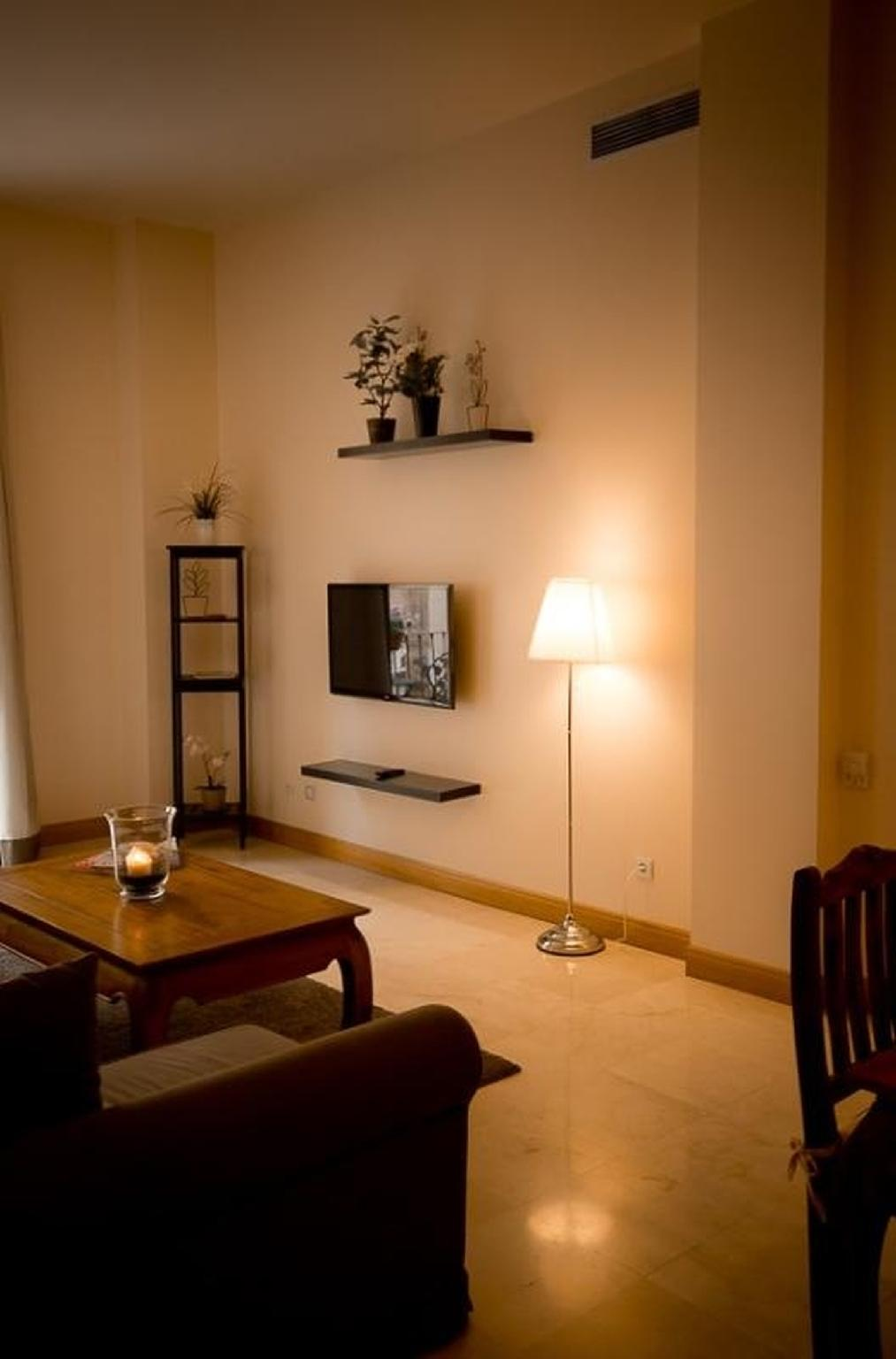 102286   Apartment In M�laga