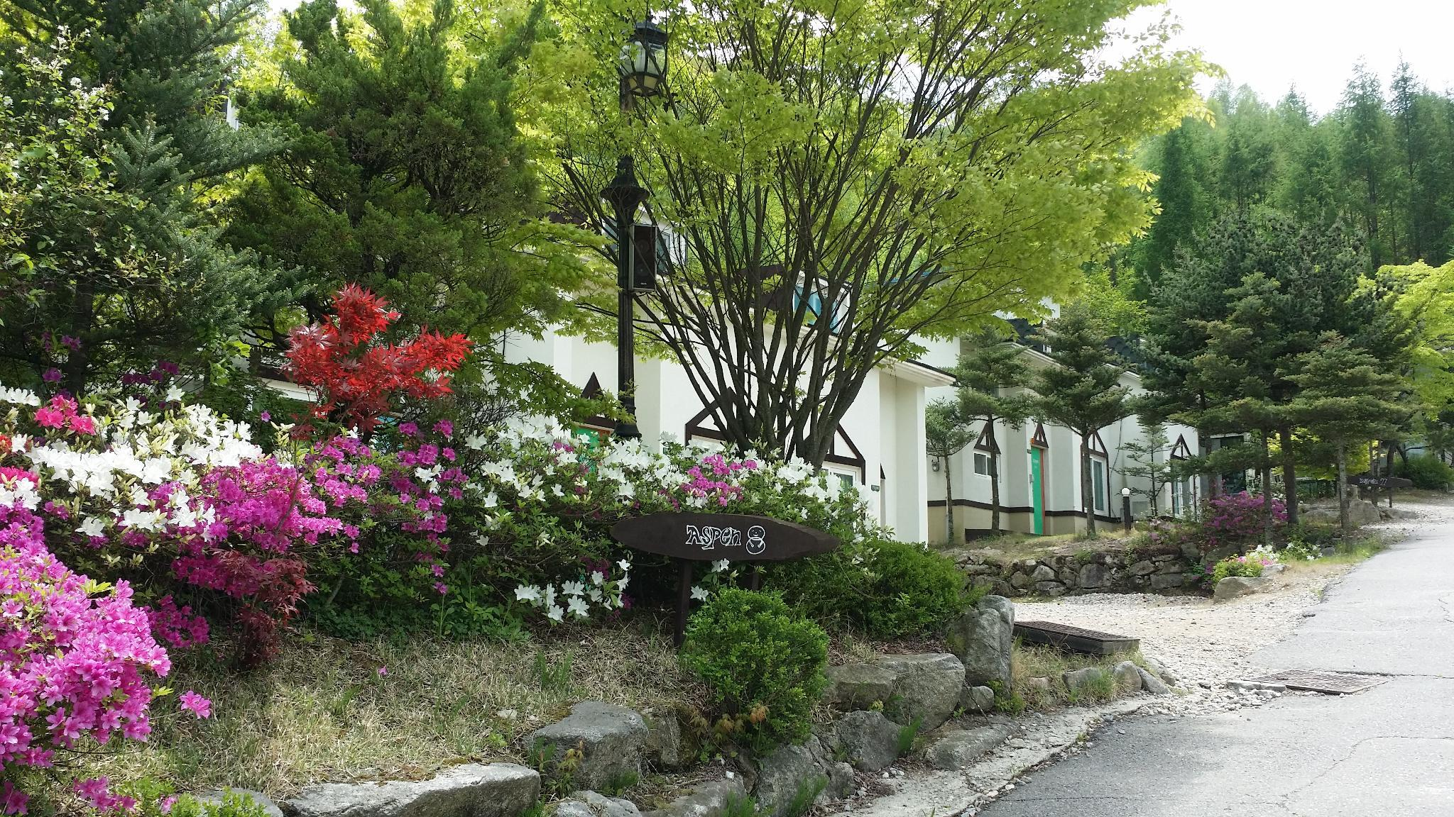 Pyeongchang Iris Pension