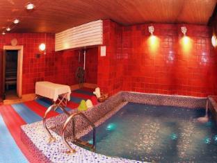 Alfa Hotel Izmailovo Complex Moscow - Swimming Pool
