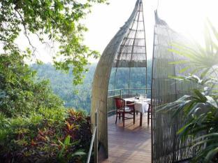 Kupu Kupu Barong Villas & Spa by L'Occitane Bali - Bird Nest on morning