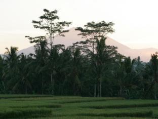 Viceroy Bali Luxury Villas Bali - Ympäristö
