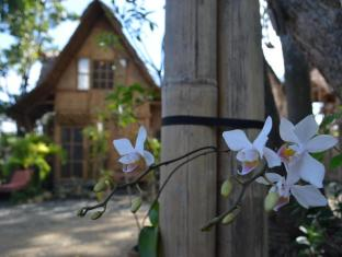 picture 3 of Almas Garden Guest House