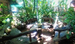 picture 3 of Sheebang Hostel