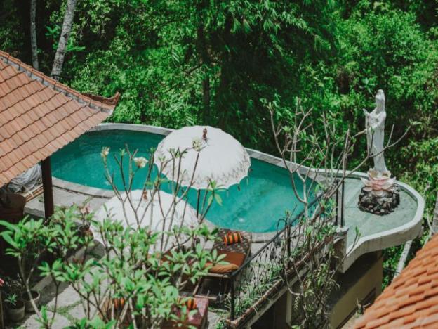 Jungle Lotus Villas