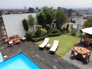 Royal Zona Mexico City - Swimming Pool