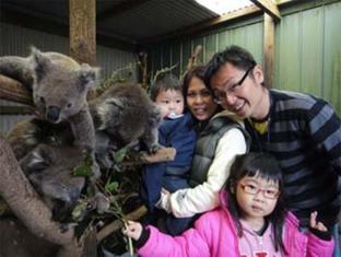 /de-de/fauna-australia-wildlife-retreat/hotel/great-ocean-road-lavers-hill-au.html?asq=nQpREeu66dnlum%2bKH4vak9i1trM2slsAu2r8KBwbd%2b6MZcEcW9GDlnnUSZ%2f9tcbj