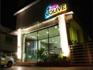 Hotel Olive