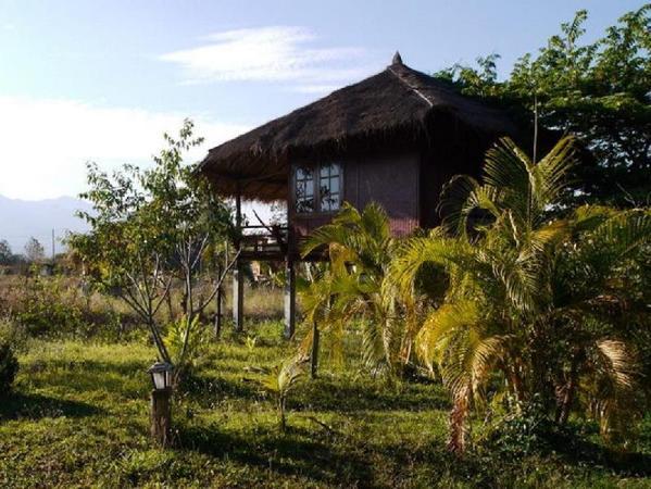 Ing Doi House Pai