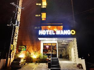 picture 1 of Hotel Mango