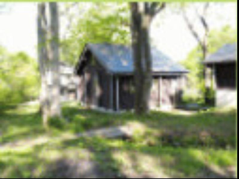Woody House Kazamidori