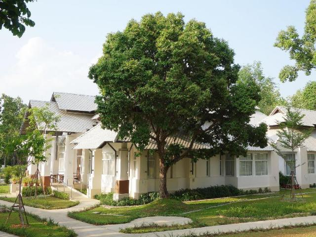 วีโว เบเน วิลเลจ – Vivo Bene Village