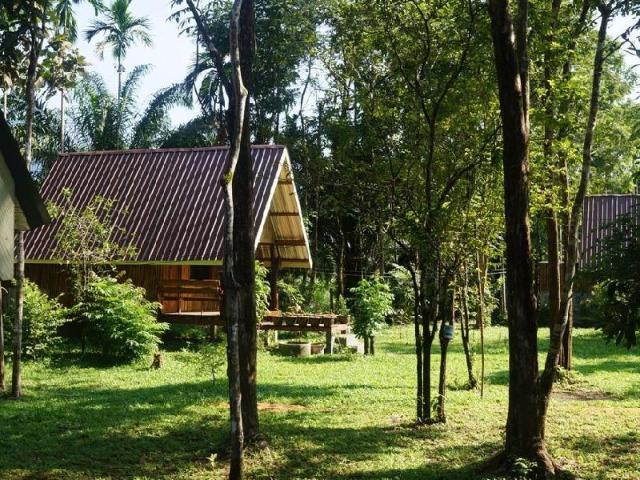 เขาสก จังเกิล รีสอร์ท – Khao Sok Jungle Resort