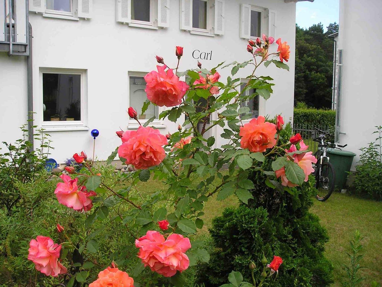 Haus Carl Im Garten Der Villa Anna In Zinnowitz