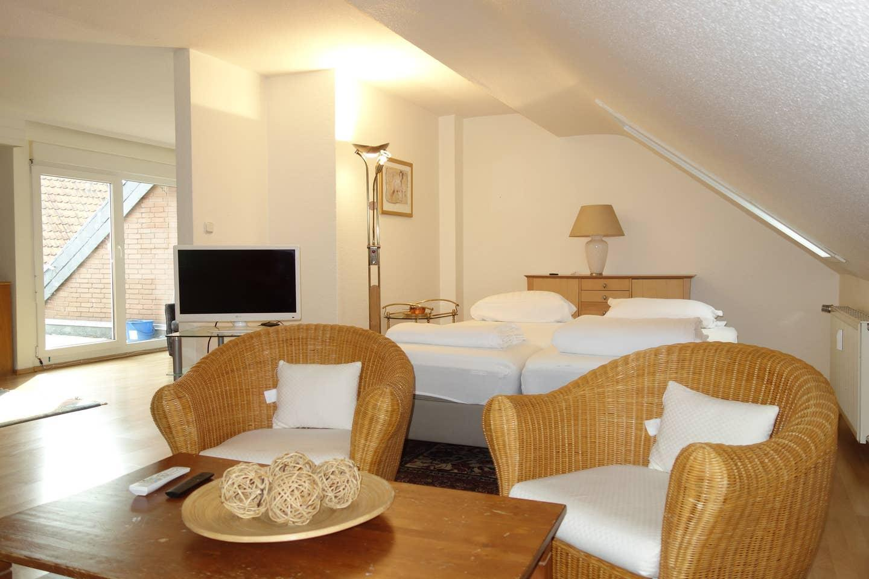 Tolstov Hotels Generous 3 Room Apartment