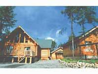 Log Hotel Early Bird