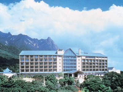Yakushima Iwasaki Hotel