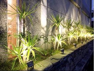 Cocotree Homestay 3