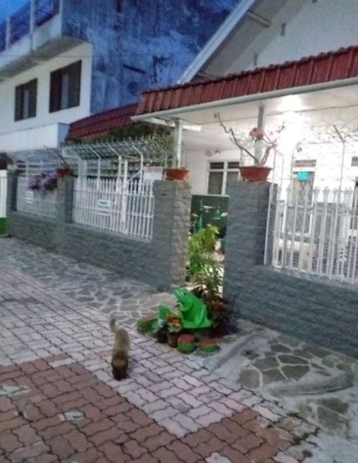 Emy's Guesthouse