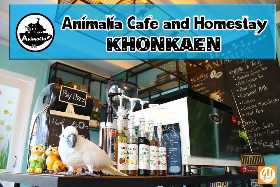 Animalia Cafe And Homestay